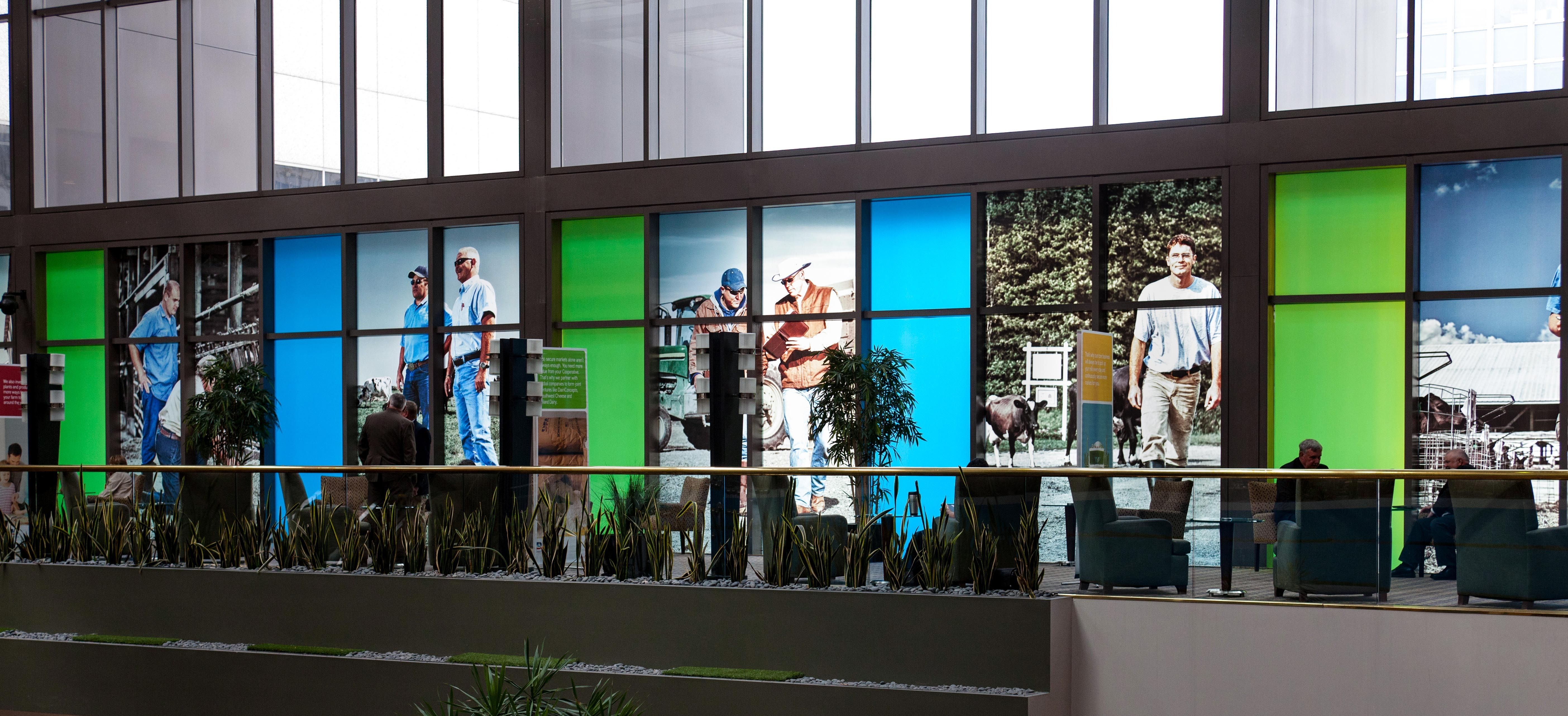DFA Hotel Window Graphics
